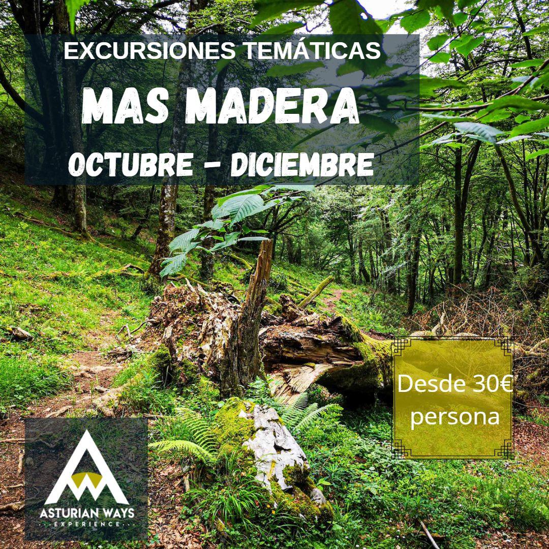 CICLO EXCURSIONES MÁS MADERA