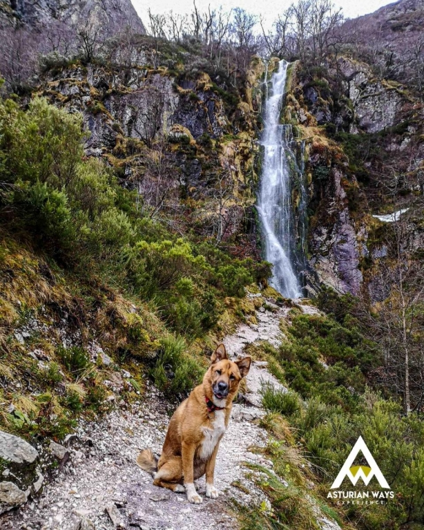Cascada en Tarna