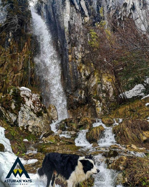 Cascada en valle de Aller